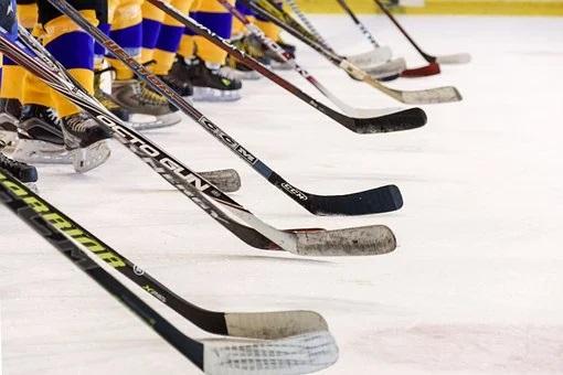 hockey-team-3311629__340_Pixabay