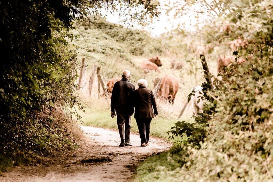 Opieka nad seniorami / Pixabay